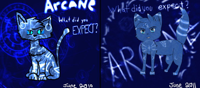 2010 to 2011 Comparison by whiteh-is-me