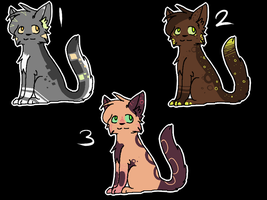 Pallet adopts-closed- by campinq