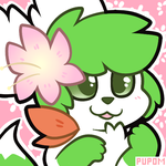 SkyWarriorKirby |Raffle Winner| by pupom