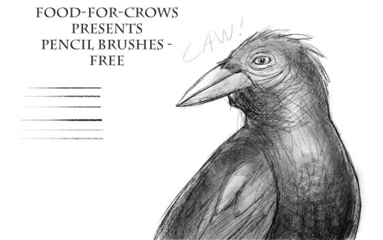 Pencil Brushes - Free by Food-For-Crows