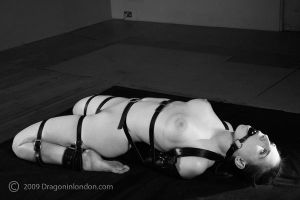 Leather Reverse Arch by dragoninlondon