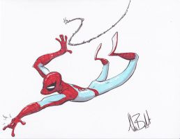 Spidey commish 2 by boldtman