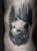 White wolf by Olggah