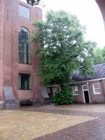 Portuguese Synagogue (Amsterdam by Hermione75