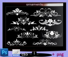 Ornaments Photoshop Cs5 by roula33