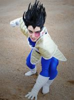 Dragon Ball Z: Vegeta by Sisters-Tamagochi