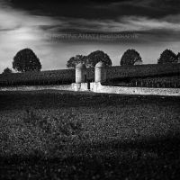 Domaine by ChristineAmat