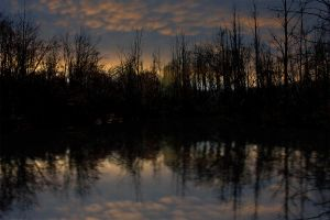In the Gloaming II by touch-the-flame