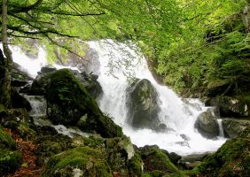 Torrent dans les Pyrenees by Louis-photos