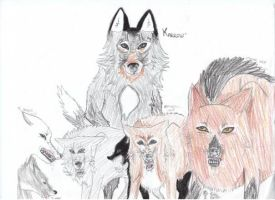 Karrow and his Man-Made Wolves by xWolfPackLeaderx