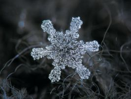 December 18 2015 - Snowflake 1 by ChaoticMind75