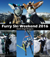 Dutch Angel Dragons @ Furry Ski Weekend 2016 by CanineHybrid
