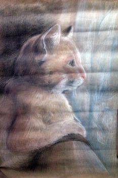 The cat by Leo-Artis