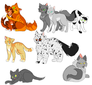 Series 6 warrior cats by Harryfly