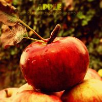 Apple :) by Sisterslaughter165