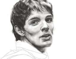 Merlin W.I.P. by MoPotter