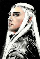 The King of Mirkwood by Someone-Else79