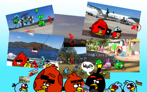 All of the Photo Bombs!!!! by AngryBirdsStuff