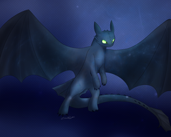 .:Toothless: by QueenOfIllusion
