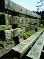 A Mossy Bench by pumpkinandpie