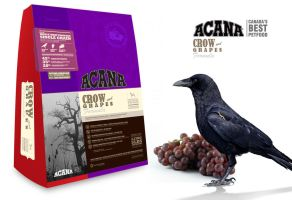 ACANA - Crow and Grapes by klimentp