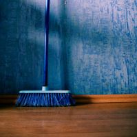 blue broom by pansinYing