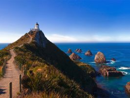 Nugget Point by vladstudio