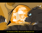Hawkfrost and Mothwing by WarriorCat3042