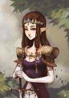 Zelda by Aikuwo