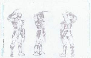 Wolverine Turnaround by AlonsoNunez