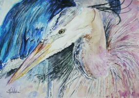 Heron by danuta50