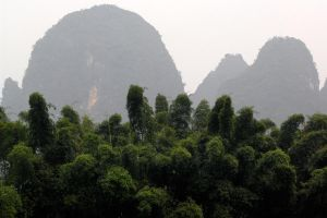 Bamboo and Karst mountains - Guilin by wildplaces