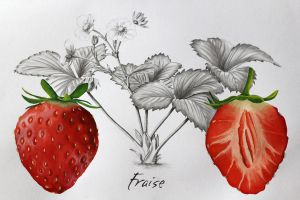 Strawberries by Noomelo