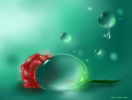 Dewdrops and a Rose by emenemomo