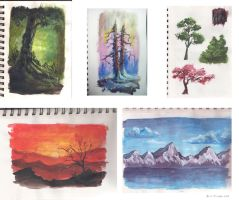 Traditional studies by sweptaway91