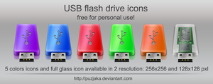 USB Flash drive icons by Puzjaka