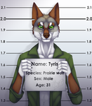 Tayriss by Firefex-wolf