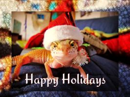 Happy Holidays from Cheetah by Fairygirl1031