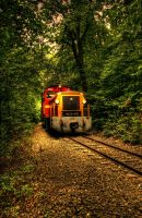forest train by hans64-kjz