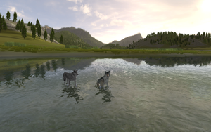 WolfQuest: Chillaxin' in Slough Creek by nightangelwolf