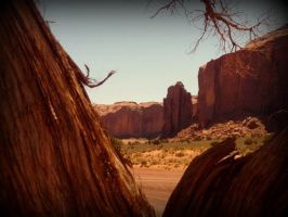 Monument Valley Coyote's View by spidermonkeykiss