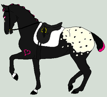 Appy Dressage by SnoHeartsMay