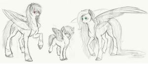 Preview: The Pegasi by Earthsong9405