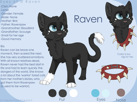 Raven reference sheet (Redo) by PaintedSerenity