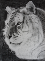 Golden Tiger portrait by Bansheeek