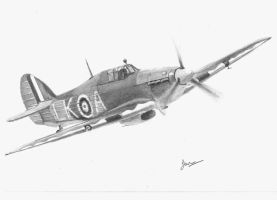 Hurricane by p40kittyhawk
