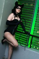 Rockabilly Catwoman: I Am Catwoman by HarleyTheSirenxoxo