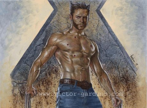 The Wolverine by ArtofGarduno
