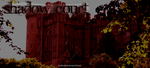 Shadow Court Custom Banner by henley421-side