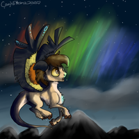 Rainbow Borealis by CoughEBeanz
